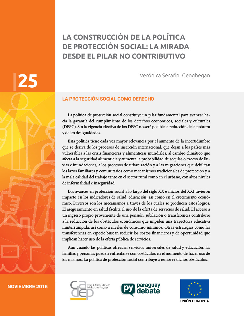 brief 25 proteccion social tapa